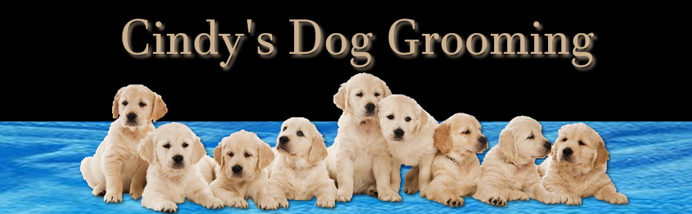 Cindy's Dog Grooming - Banner